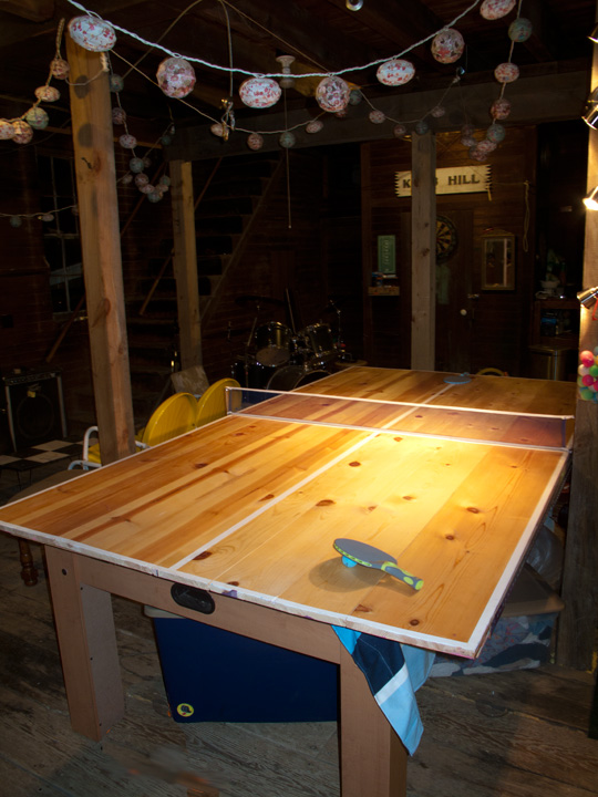 HomemadePingPongTable(bl).jpg