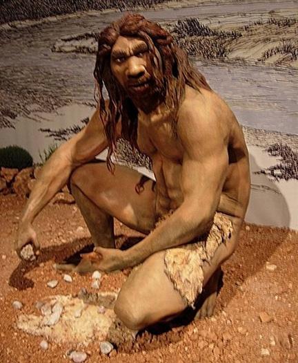 Homo_heidelbergensis(bl).jpg
