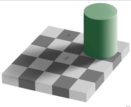IllusionGraySquares(bl).jpg