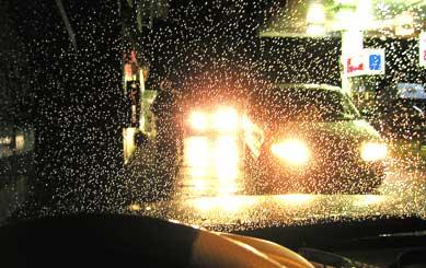 RainPEIRT(bl).jpg
