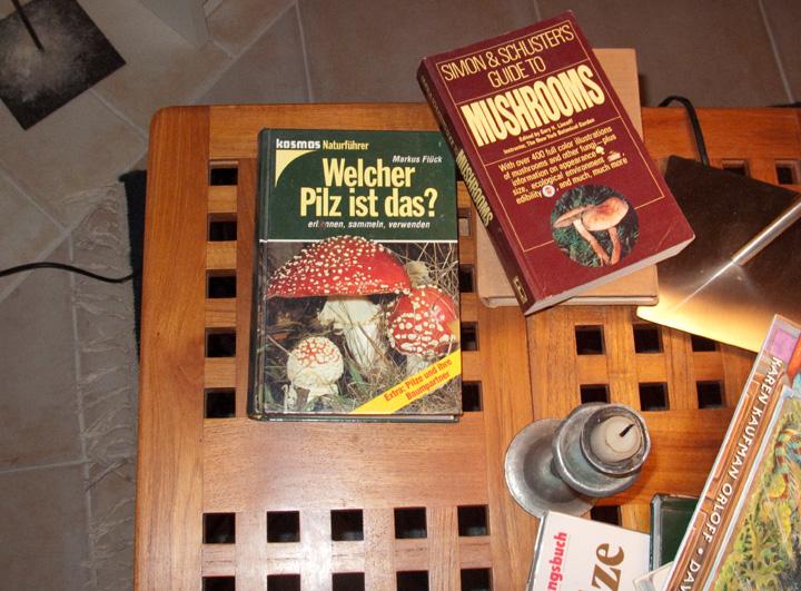 WhichMushroomBook(bl).jpg