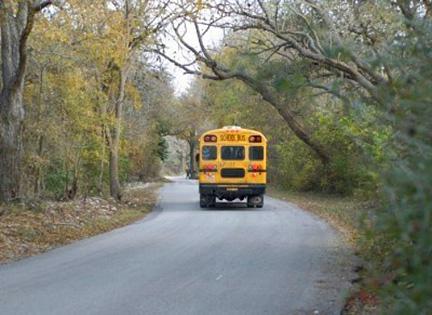 schoolbus(bl).jpg
