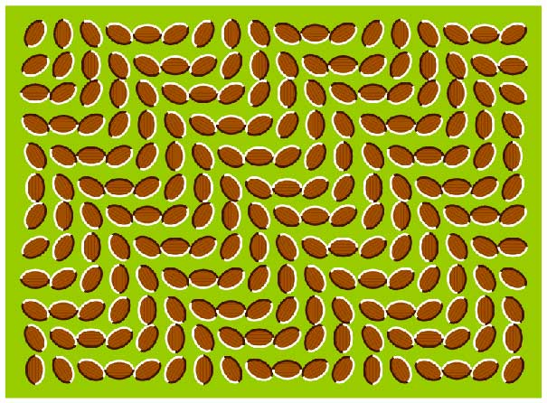 trippy(bl).jpg